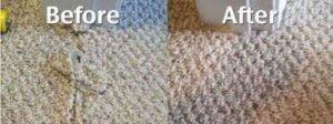 torn carpet repaired
